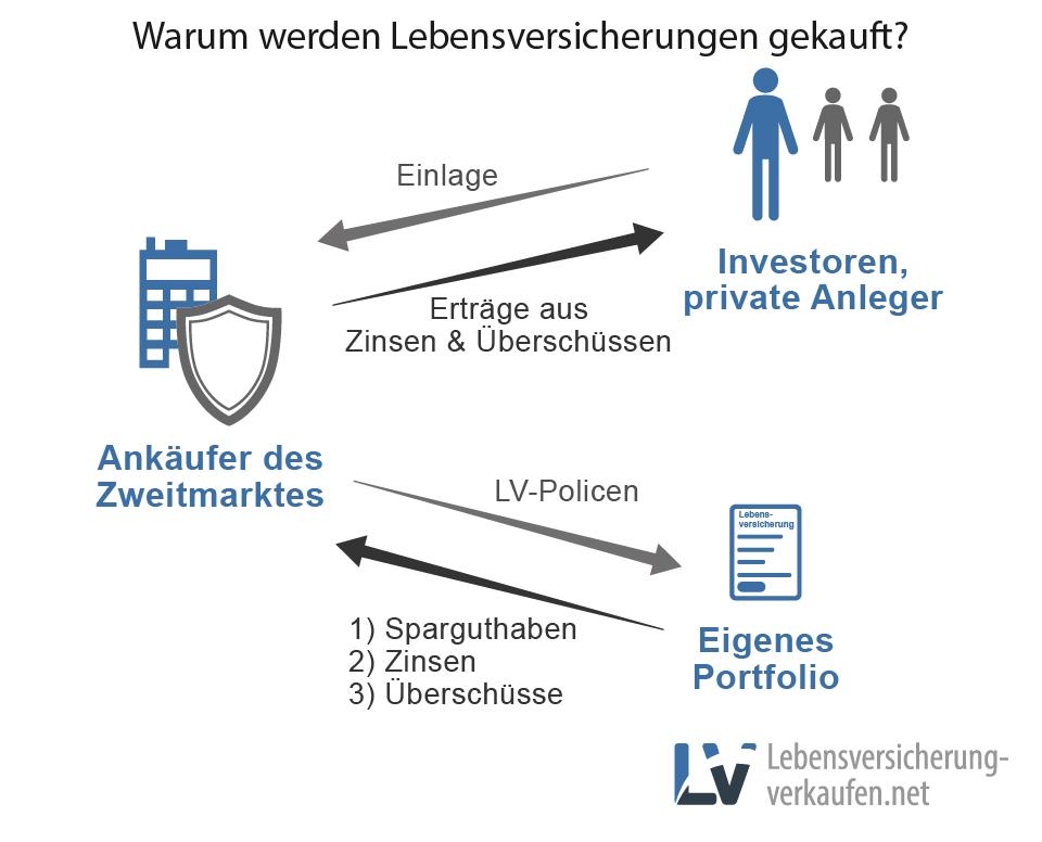 Info-Grafik zu den Gründen für den Kauf von Lebensversicherungen